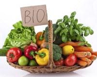 BIO und Fairtrade Lebensmittel: Sind sie wirklich hochwertiger?