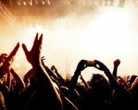 Fans bei einem Konzert