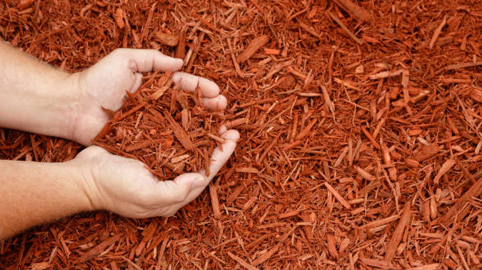 Mulch vom Gartenhäcksler
