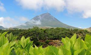 Vulkan Pico auf den Azoren