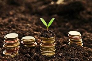 Geldstücke wachsen aus der Erde